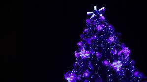 decoration tree rotating on black background