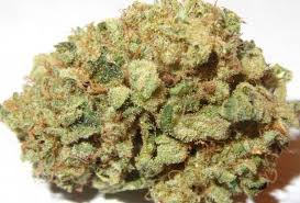 wedding cake og wedding cake marijuana strain reviews allbud