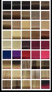 Purple Remy Hair Extensions by Remy Hair Extensions Colour Chart