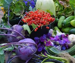 planning this year u0027s vegetable garden lovely greens garden