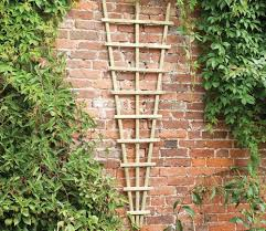 forest traditional fan trellis 180 x 60cm gardensite co uk