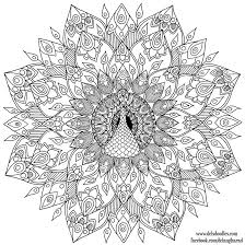 hand drawn peacock mandala colouring page by welshpixie on deviantart