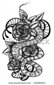 snake snake roses snake snake stock vector 315092834