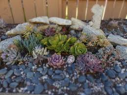 Pebbles And Rocks Garden 32 Backyard Rock Garden Ideas