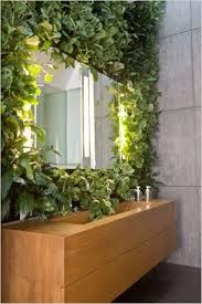 10 best vertical garden plants with care tips gardenoholic