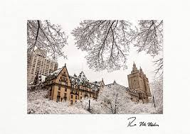 Business Printed Christmas Cards Dakota And San Remo Winter Nyc Personalized Christmas Cards
