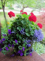 Image For Flowers 27 Flowerpots That Will Brighten Up Your Front Porch Page 12 Of