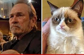 Unamused Cat Meme - tommy lee jones grumpy face meme goes viral tmz com