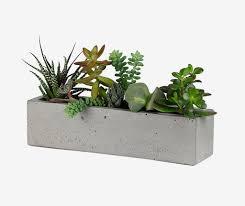 window planters indoor accessories large concrete planters 30 uniquely beautiful