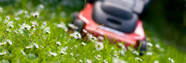 most u0026 least reliable walk behind lawn mower brands consumer reports