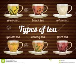 types of mugs types of tea in glass cups with tea leaves stock vector image