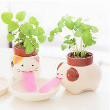 animal planter animal planters ebay