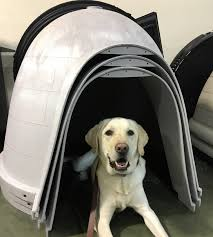 Dog Igloos March 2017 A Dog Training