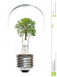 light bulb with tree inside stock photo image 17408926