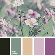 color of greens color of young greens green and purple colors