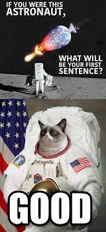 Astronaut Meme - if you were this astronaut
