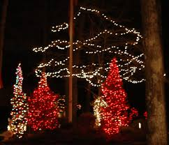 Outdoor Christmas Lights Decorations by Decorate A Tree Outside With Christmas Lights Christmas Lights