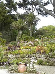ruta u0027s ramblings the abbey gardens tresco