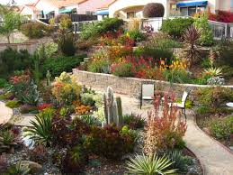 Tiered Backyard Landscaping Ideas Drought Resistant Landscaping Ideas For Backyard U2014 Jbeedesigns