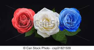 white and blue roses symbolic white and blue roses three heads in