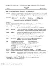 Sample Summary Of Resume by Resume Career Summary Career Consultant Sample Resume 21st