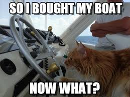 Now What Meme - so i bought my boat cat got his boat meme on memegen