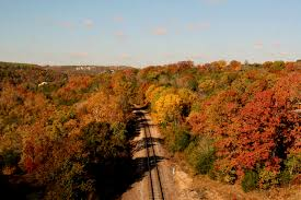 places fall foliage explorebranson official