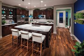 Modern Wooden Kitchen Designs Dark by Blue Kitchen Walls Dark Cabinets Google Search Kitchen
