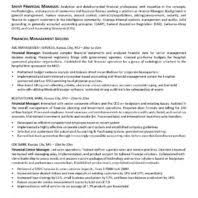 Finance Manager Sample Resume by Excellent Finance Manager Management Success Resume Vntask Com