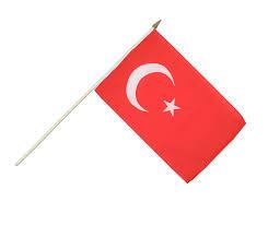 Turkey National Flag Hand Waving Flag Turkey 12x18