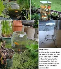 Types Of Fish For Garden Ponds - 21 small garden backyard aquariums ideas that will beautify your