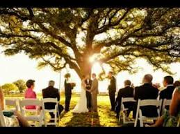 small wedding ceremony small wedding ideas