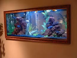 extra large aquarium decorations