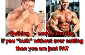 Bulking Memes - 20 march 2013 you need it
