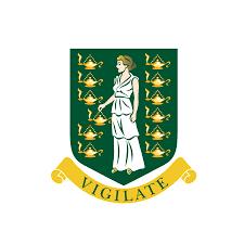 Virgin Islands Flag Government Of The Virgin Islands Youtube