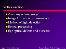 Anatomy Of Human Eye Ppt Imaging Science Fundamentalschester F Carlson Center For Imaging