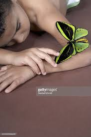 boy lying and looking at large green butterfly on arm stock