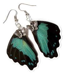 unique earrings fashion acessories unique earrings real butterfly wings acessories