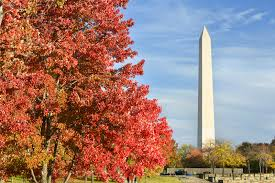 washington dc thanksgiving blog american executive sedan service inc