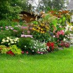 How To Design A Flower Bed Of Low Maintenance Landscaping Ideas Garden Front Image Designs