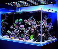 Led Aquarium Lighting Led Aquarium Light Dimmable Full Spectrum Coral Reef Tank Marine