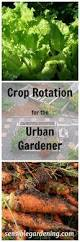 What Is Urban Gardening 2379 Best Conquer Lifestyle Images On Pinterest Awesome Funny