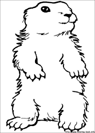 groundhog day coloring pages on coloring book info