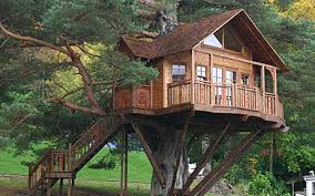 5 tree house resorts in india that will bring out the child in you