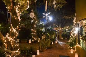 Reid Park Zoo Christmas Lights by Rebecca Goldansky Author At Edible Baja Arizona Magazine