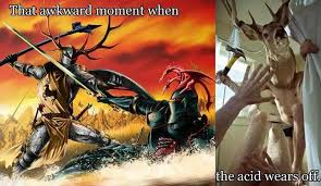 Oh Deer Meme - oh deer god imgur