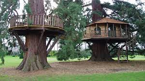 awesome fun tree houses youtube