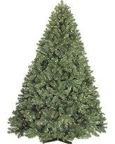 sweet deals on slender christmas trees