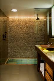 341 best bathrooms images on pinterest bathroom ideas room and zen sunken bathtub with shower more
