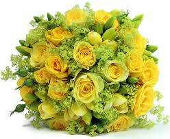 cheap flowers delivered 14 best cheap flowers delivered images on cheap